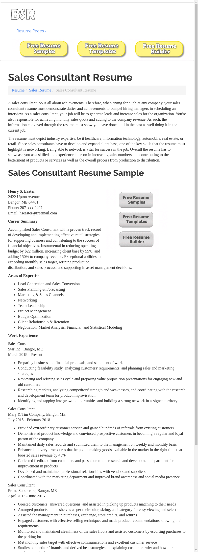 sales consultant resume sample  the document template