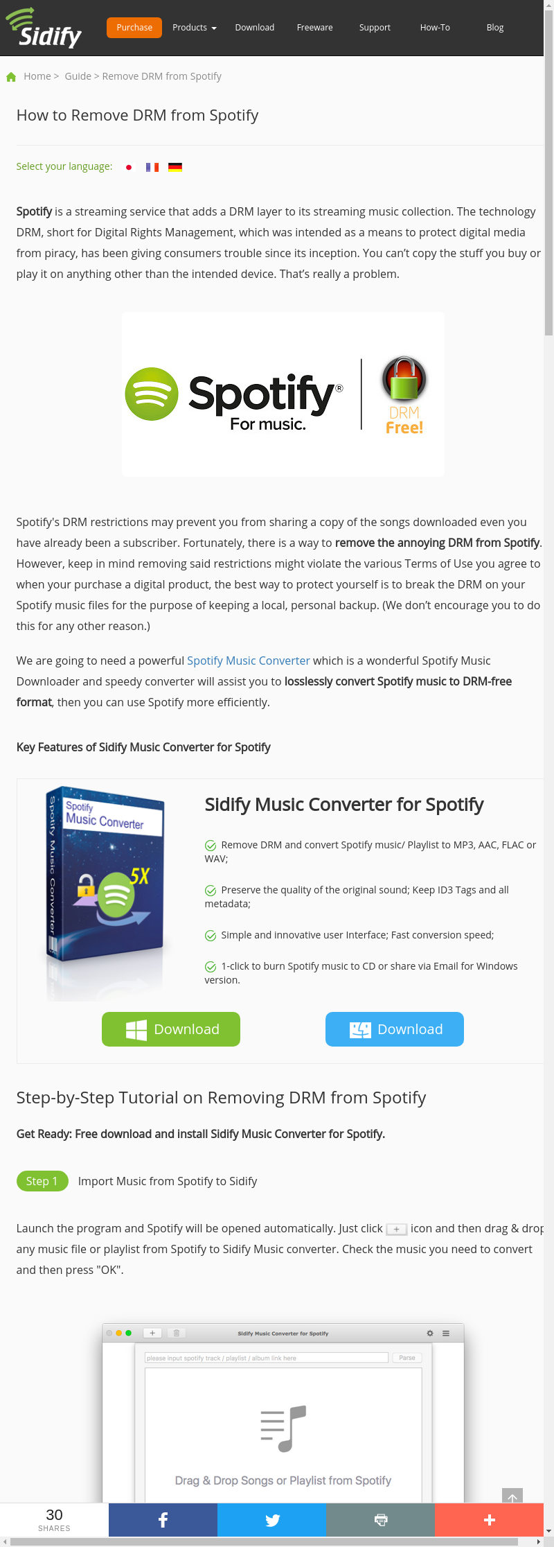 Mix · How to Remove DRM from Spotify Music