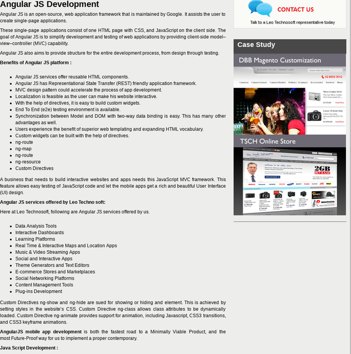 Mix · Angular JS Development company| AngularJS Developer