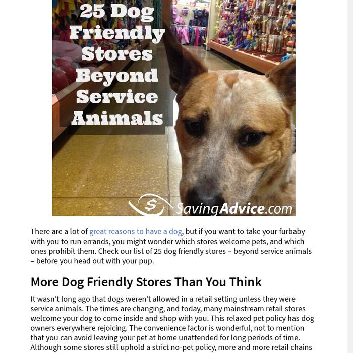 Mix · 25 Dog Friendly Stores Beyond Service Animals